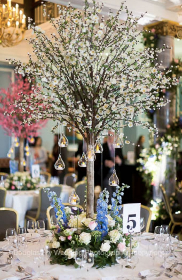blossom trees wedding lounge