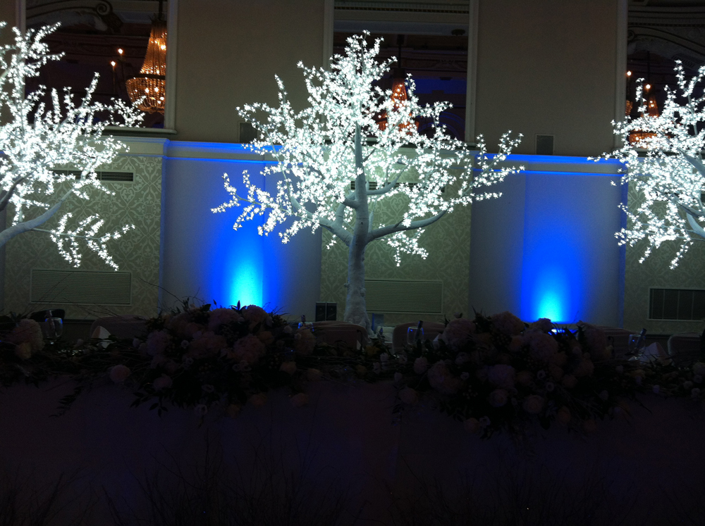 Connaught Rooms Led Lighting