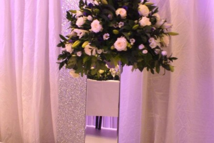 Mirrored Pedestals