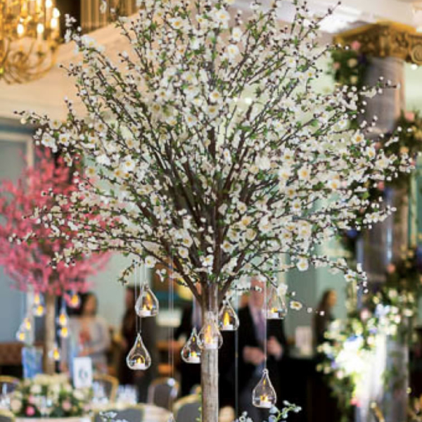 blossom trees - wedding lounge